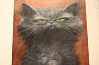 Gray Blevins Cat