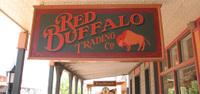 Buffalo1_2
