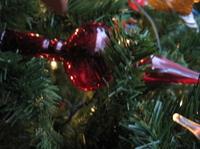 Redglasstreetopper